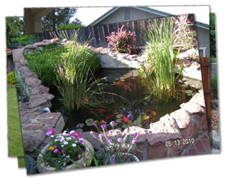 total landscape concepts roseville ca and surrounding areas